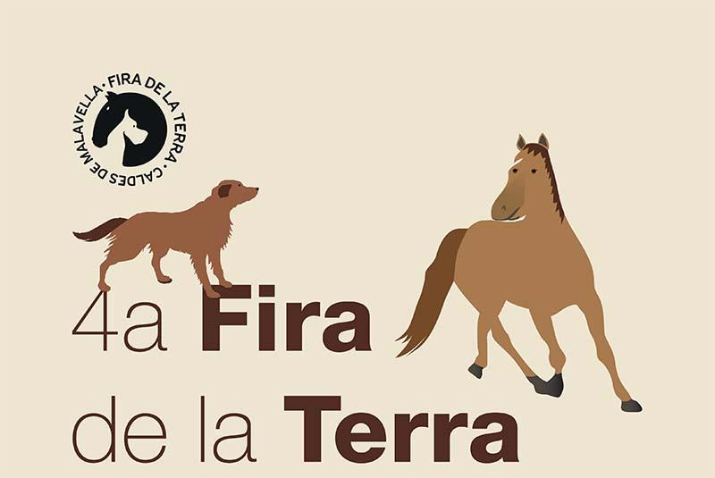 CartellFiraTerra2015
