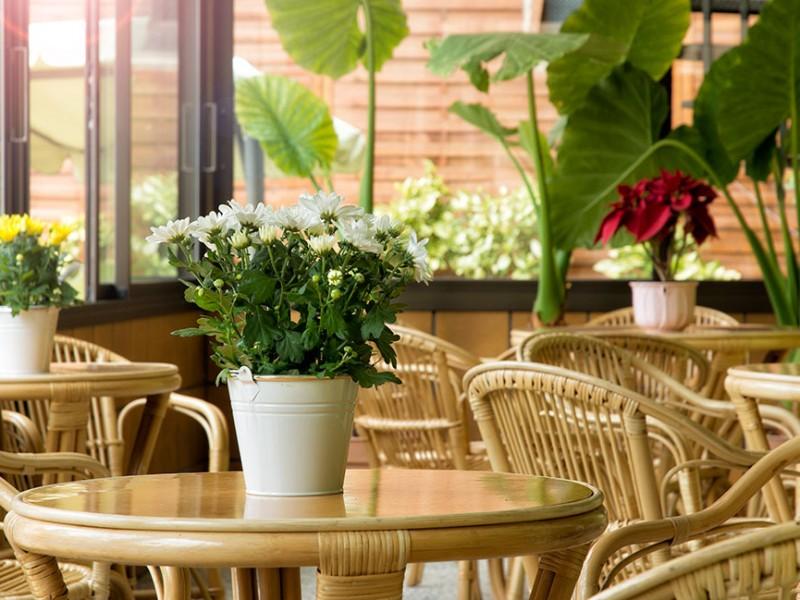 jardin-terraza-FAB_023